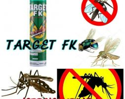 Target FK Aerosol Insecticides